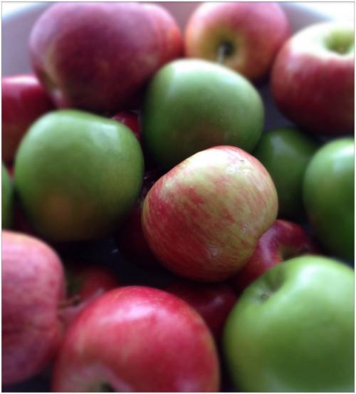 Apples-Granny-Honey-Crisp